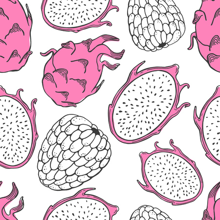Seamless nature pattern with sketch of fruit. Pink vector illustration of pitaya on white background. Tropical food. Illustration