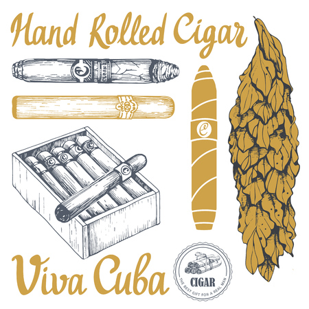 Vector illustration with classical smoking set. Bunch of tobacco box, hand rolled cigars, leaf in sketch style. Best cuban quality. Stock Illustratie
