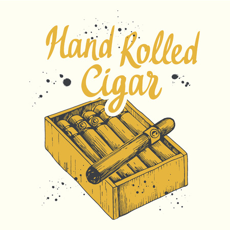 Vector illustration with hand rolled cigars in sketch style. Çizim