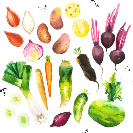 Watercolor illustration with farm grown illustrations. Vegetables set: potatoes, onions, beets, leeks, carrots, cucumber. Fresh organic food. Imagens