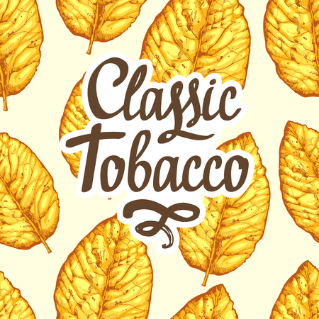 Seamless pattern with dried yellow leaves on white background. Vector illustration of tobacco.