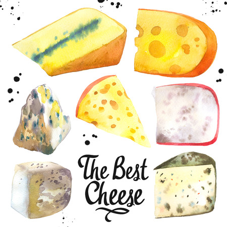 Watercolor illustration with different noble cheeses: camembert, gouda, parmesan, blue, edammer, maasdam, brie, roquefort. Snack bar. Farm dairy illustrations. Fresh organic food. 版權商用圖片