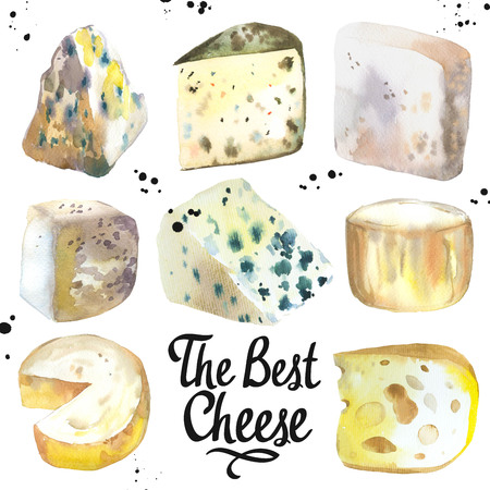 Watercolor illustration with different noble cheeses: camembert, gouda, parmesan, blue, edammer, maasdam, brie, roquefort. Snack bar. Farm dairy illustrations. Fresh organic food. Imagens
