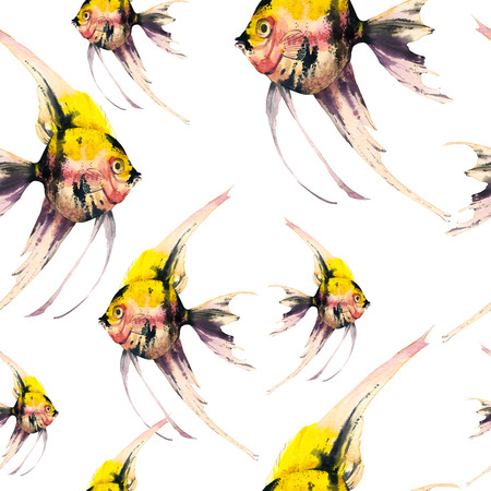 Seamless pattern with tropical scalar fish. Watercolor illustration with hand drawn aquarium exotic fish on white background. Imagens