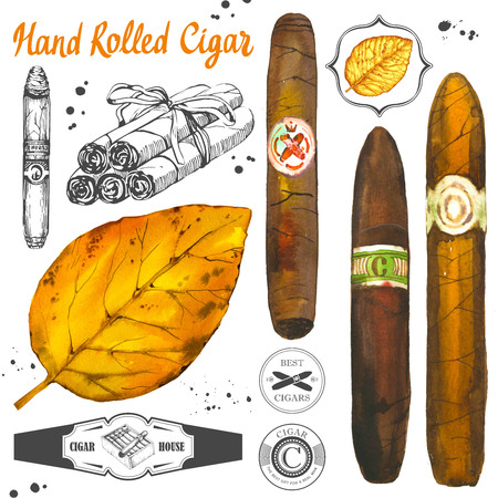Watercolor and sketch illustration with classical smoking set. Bunch of tobacco and box with hand rolled cigars, leaf in hand drawn style. Best cuban quality.