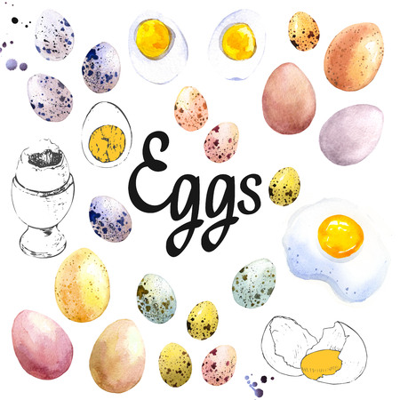 Watercolor illustration of chicken and quail eggs. Set of hand drawn organic farm food.