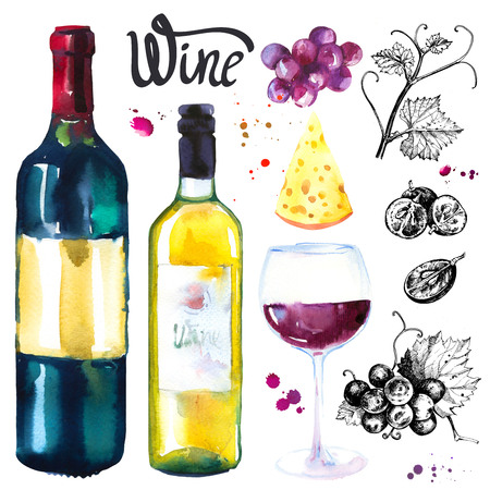 Wine set. Winemaking illustrations in sketch style. Watercolor and sketch illustration with wine glass, bottle, grapes, grape twig and cheese. Classical illustration drink.