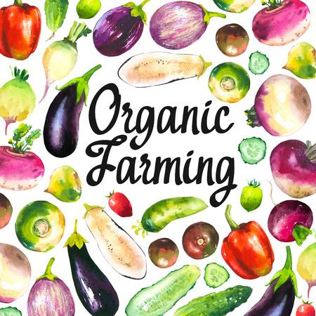 Watercolor illustration with round composition of farm illustrations. Vegetables set: pepper, cucumber, turnip, radish, eggplant, tomato. Fresh organic food. Stock Photo