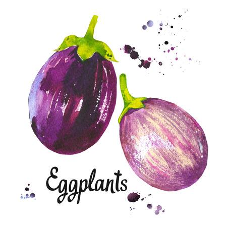 Watercolor vegetables. Fresh farm food. Set of different kinds of eggplants. Simple painting sketch. Violet set.