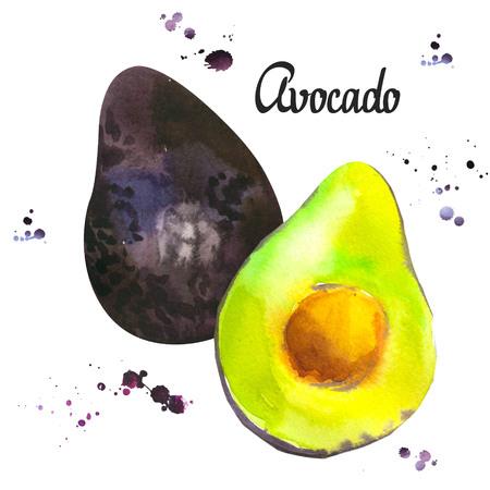 Watercolor green fresh avocado. Provencal style. Recent  paintings of organic food. Veggie menu Stock fotó - 98856674
