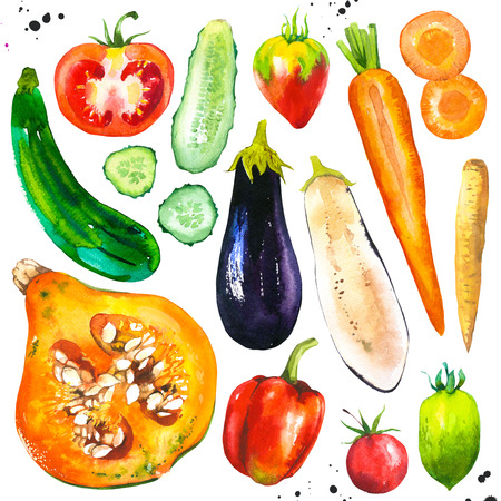 Watercolor illustration with farm grown illustrations. Vegetables set: tomato, eggplant, carrots, pumpkin, cucumber, zucchini, peppers,. Fresh organic food.