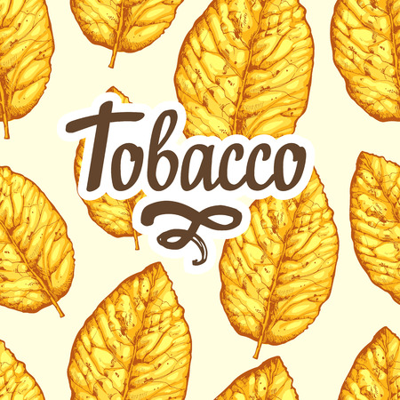 Seamless pattern with dried yellow leaves on white background. Vector illustration of tobacco. Stock fotó - 102382303