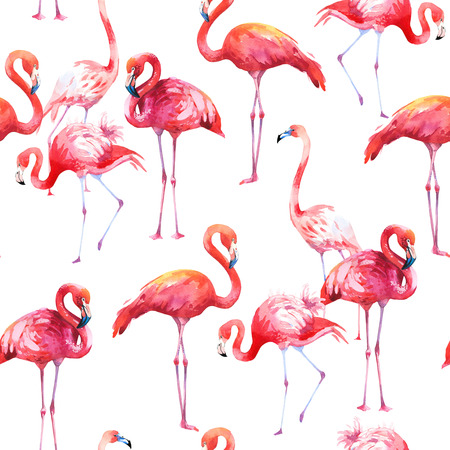 Watercolor seamless pattern on white background. Illustration with pink flamingo. Tropical bird. Paradise. 스톡 콘텐츠 - 105779549