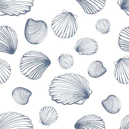 Seamless pattern. Vector Illustration of handdrawn seashells in sketch style on white background. Beach design.