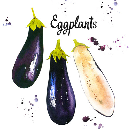 Watercolor vegetables. Fresh farm food. Set of different kinds of eggplants. Simple painting sketch. Violet set.