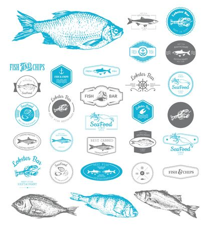 Vector Illustration for fish restaurant or fish market. Designs set for fish restaurant or bar with a picture of the fish. Blue sings on white background.