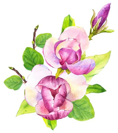 Spring composition with watercolor magnolia. Floral purple illustrations with realistic flowers on white background for your design and decor.