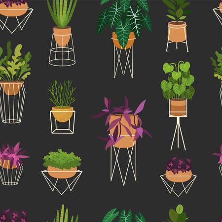 Houseplants flat seamless pattern. Potted succulent and cactus natural background. Sansevieria leaves, decorative snake plant foliage texture. Botanic wrapping paper, wallpaper vector design Vettoriali