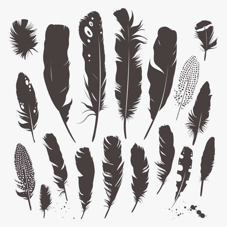 Vector set with feathers. Natural design. Boho style. Simple silhouettes. Black and white.