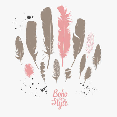 Vector set with feathers. Natural design. Boho style. Simple silhouettes.