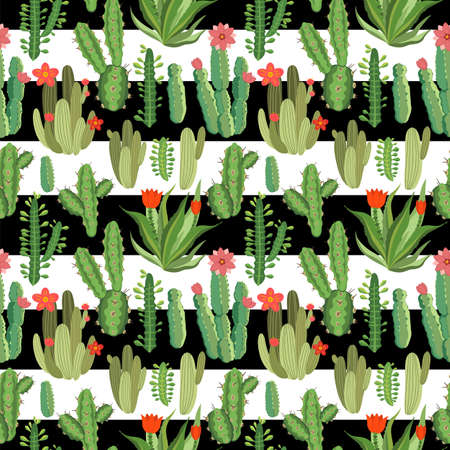 botanical illustration with Peruvian cactus. Vector seamless pattern on black and white striped background. Summer plants. Vettoriali