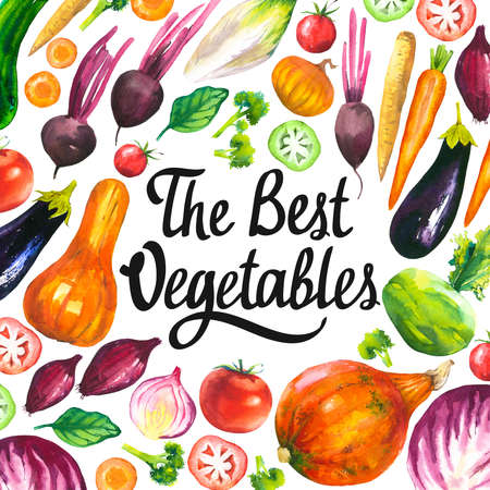 Watercolor illustration with round composition of farm illustrations. Vegetables set: eggplant, pumpkin, zucchini, onion, tomato, broccoli, beets, carrots, cabbage kohlrabi. Fresh organic food. Archivio Fotografico