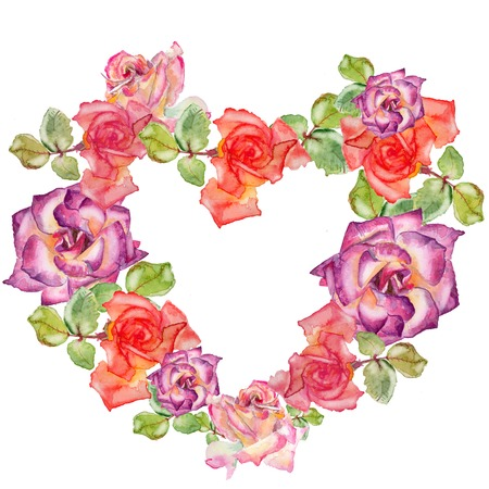 botany: Colorful roses in heart shape on a white bachground