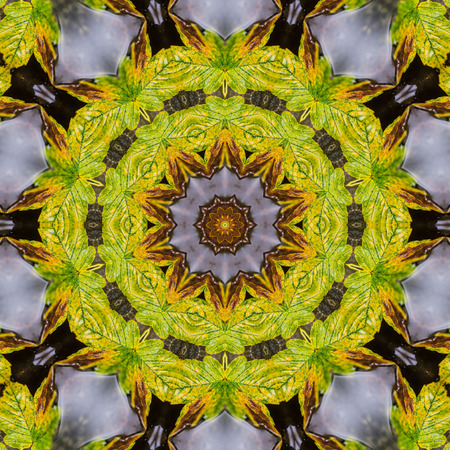 resulting: Background shaped kaleidoscope resulting from a photograph. Stock Photo