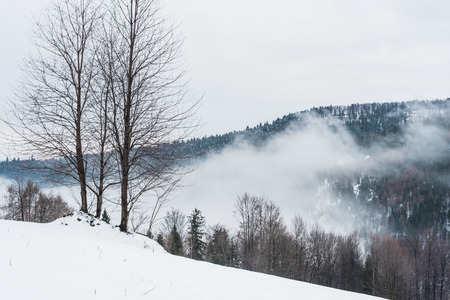 Photo of mountains in winter