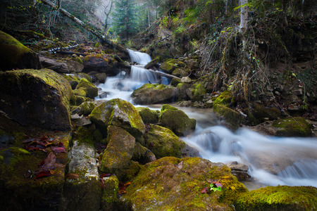murmur: mountain river waterfall in the autumn forest
