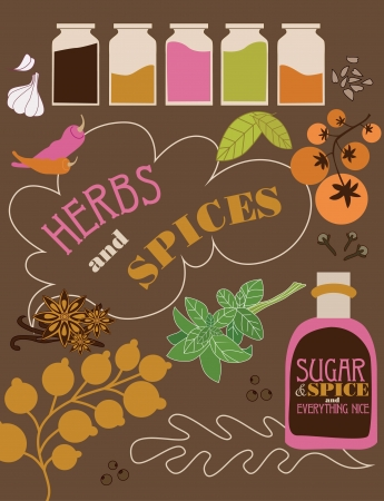 herbs and spices card. vector illustration Vector