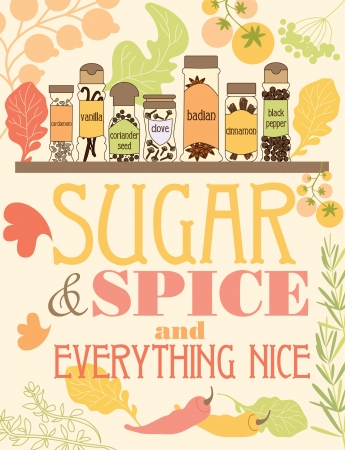 cardamom: spice card design. vector illustration