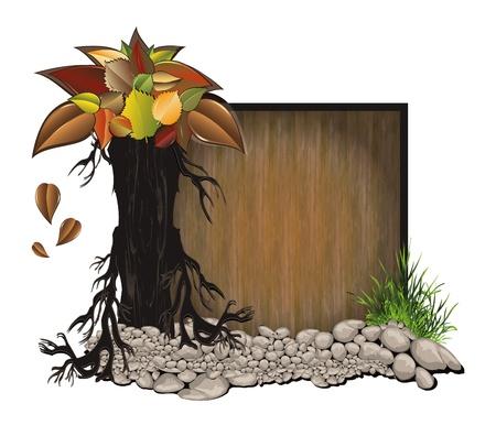 beech: raster Board wood stone tree