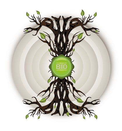 vector Bio background circle Vector