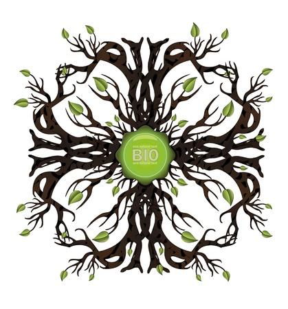 vector Bio tree icon Vector