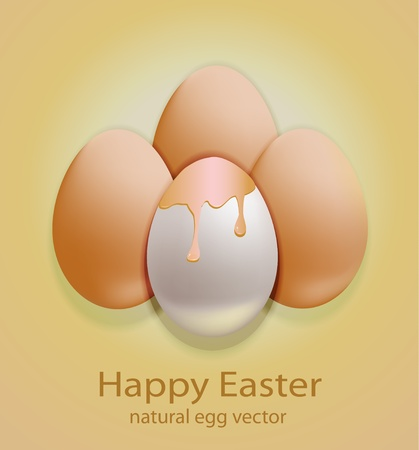 Easter Egg natural Vector