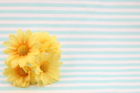 Yellow Summer Flowers Blue Stripe Background
