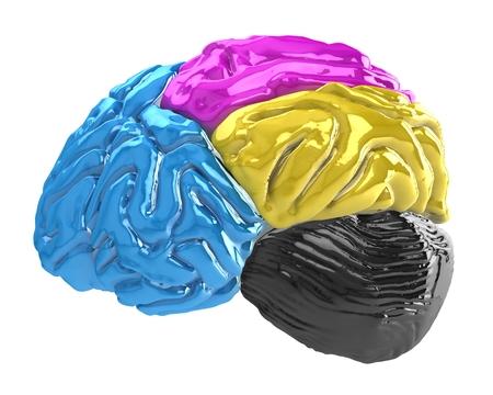 3d cmyk brain