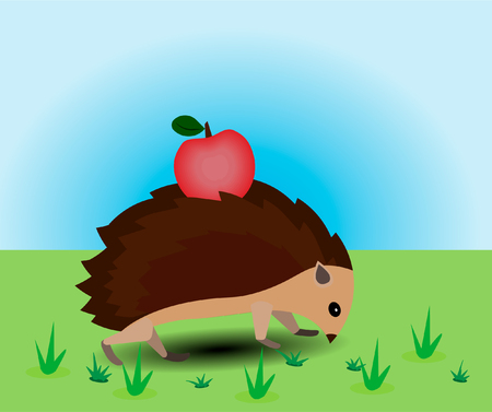 The hedgehog strolls through the meadow.