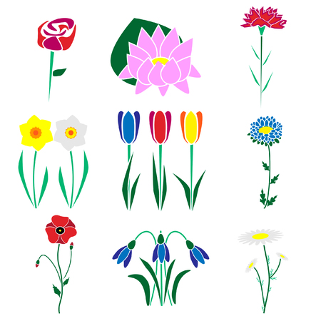 Set of the most common flowers.