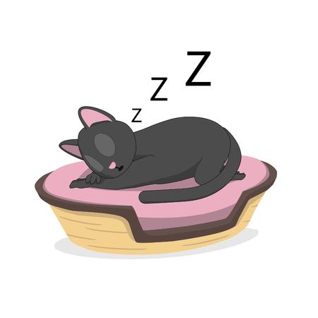 A cat is sleeping in a basket. Gray cat in a cozy basket.