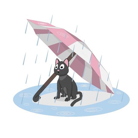 Cat under an umbrella, rain. Sad cat waiting for its owner. Ilustração