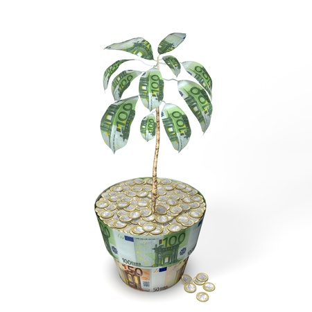 Euro Money Tree Plant Stock Photo - 14408507