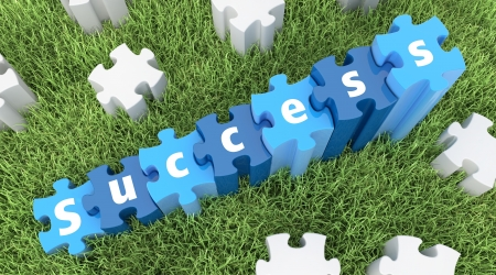 3D text Success, puzzle, in the grass Stock Photo - 15327843