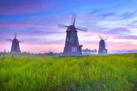 Sunrise windmill farm in korea. Windmill farm sunrise landscape. Sunrise windmill farm landscape