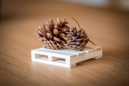 pine cones on the table wooden 免版税图像