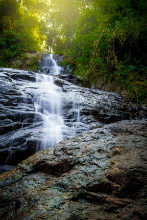 waterfall in the forest and light fair