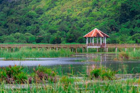 Bridge on the lake in national park, Sam Roi Yod National Park, Prachuap Khiri Khan, Thailand