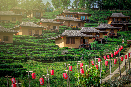Baan Rak Thai village, a Chinese settlement in Mae Hong Son province, Northern Thailand. The village was established by refugees who escaped the communists. Huts are surrounded by tea plantations. Stock Photo