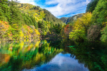 colorful scenery of the lake and forest at Jiuzhaigou national park,